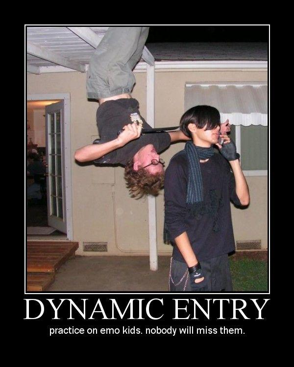 dynamic_entry.jpg