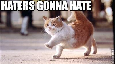 Image result for haters gonna hate