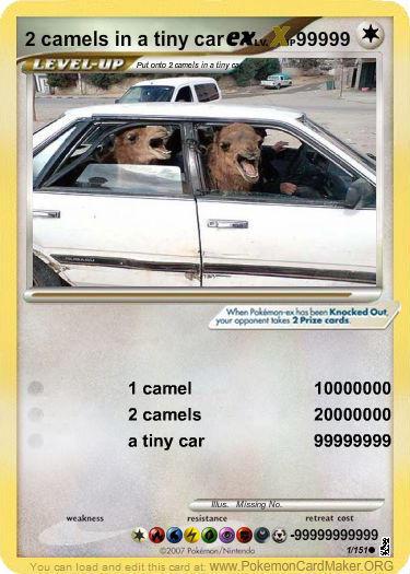 2-camels-in-a-tiny-car-ex-lv-x.jpg