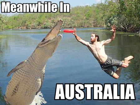 meanwhile_in_australia1.jpg