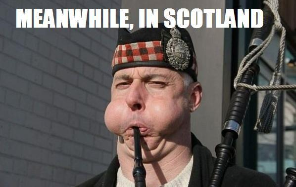 meanwhile_in_scotland.jpg
