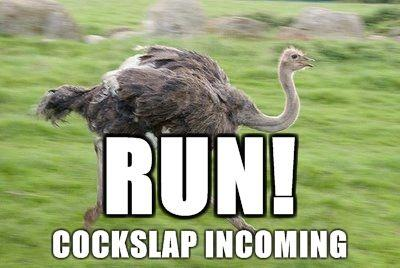 lolostritch387-run-cockslap-incoming.jpg