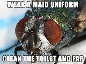 fetish_fly_maid.jpg