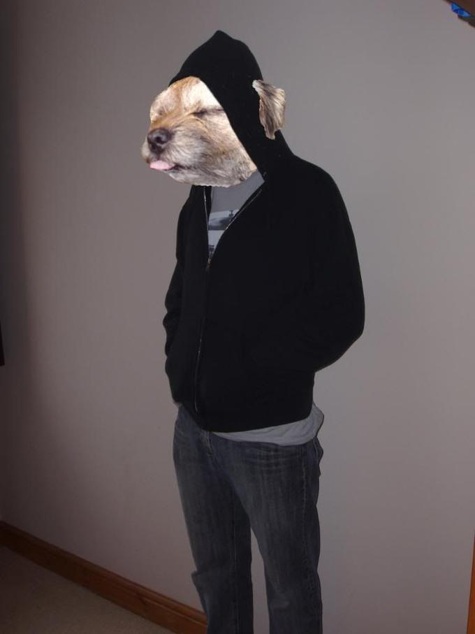 dogman3.jpg