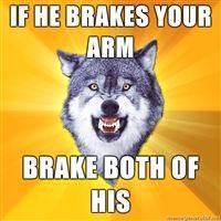 My_Courage_Wolf.jpg