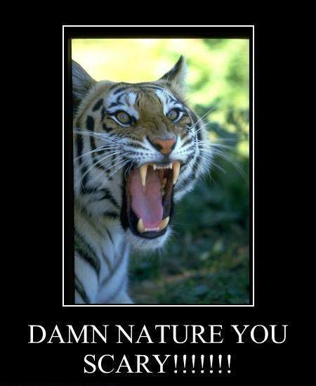 DAMN_NATURE_YOU_SCARY_by_Dageon22.jpg