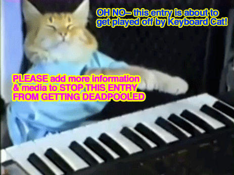 keyboardcat.jpg