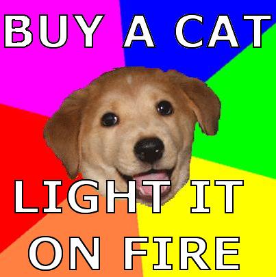 advice_dog.png