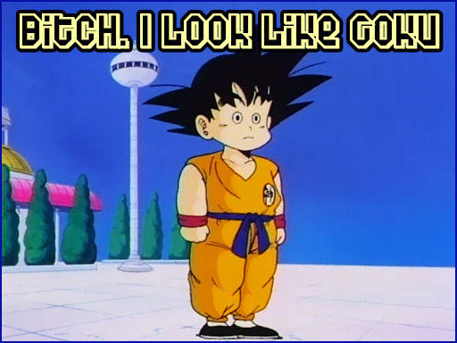 bitch_i_look_like_goku_01.jpg