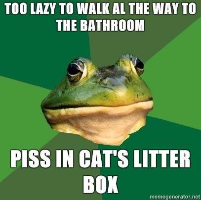 1Foul-Bachelor-Frog-too-lazy-to-walk-al-the-way-to-the-bathroom-piss-in-cats-litter-box.jpg