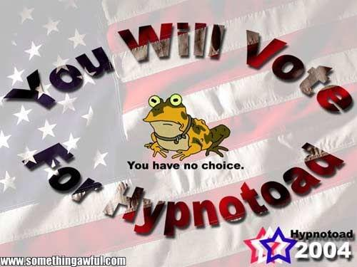 votetoad.jpg