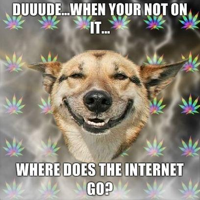 duuudewhen-your-not-on-it-where-does-the-internet-go.jpg