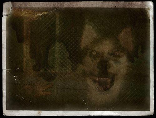 Smiledog_original.jpg