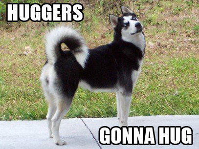 Huggers.jpg