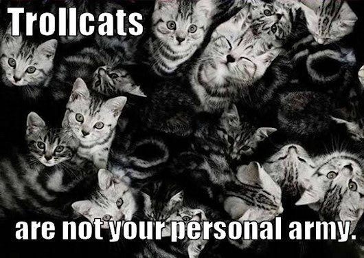 not_your_personal_army_trollcat1.jpg