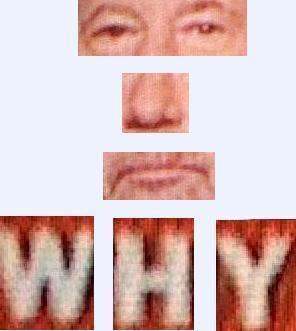 Why_23.JPG