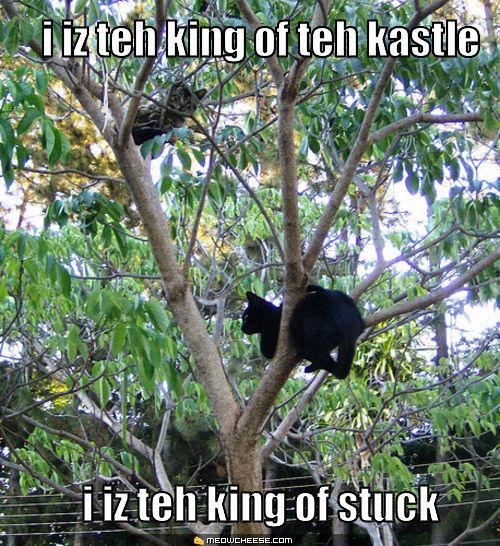 king-of-teh-kastle.jpg