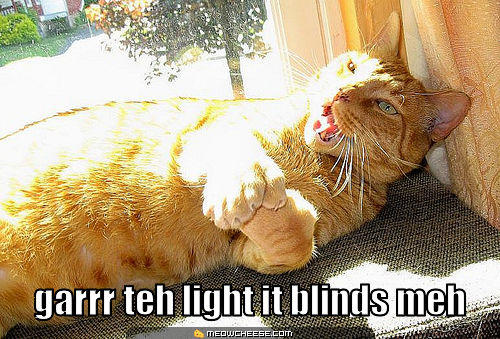 garrr-teh-light-it-blinds-meh.jpg
