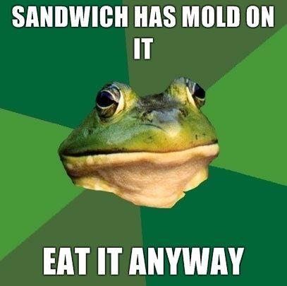 sandwich-has-mold-on-it-eat-it-anyway.jpg