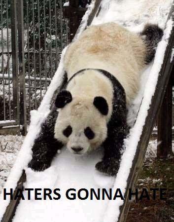 panda-slide.jpg