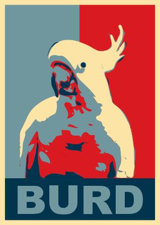 burd.png