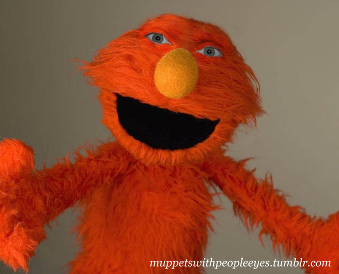 muppets-with-human-eyes-2.jpg