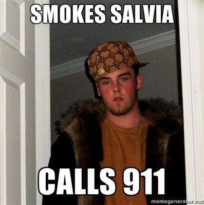 SMOKES-SALVIA-CALLS-911.jpg