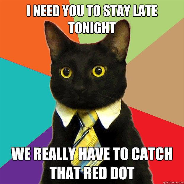 Subreddit For Cat Memes