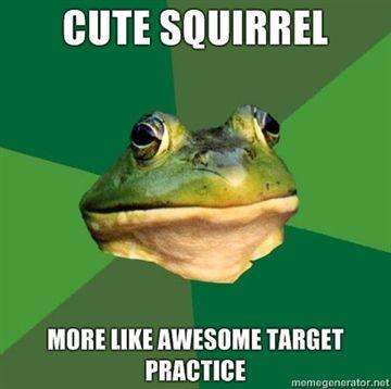 cute-squirrel-more-like-AWESOME-target-practice.jpg