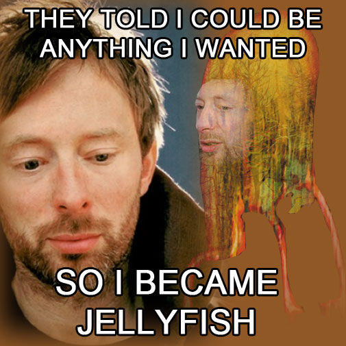 thomyorkejellyfish.jpg