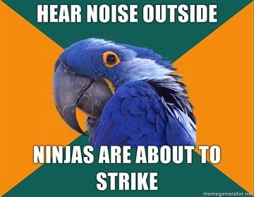 hear-noise-outside-ninjas-are-about-to-strike.jpg