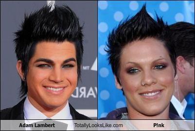 adam-lambert-totally-looks-like-pink.jpg