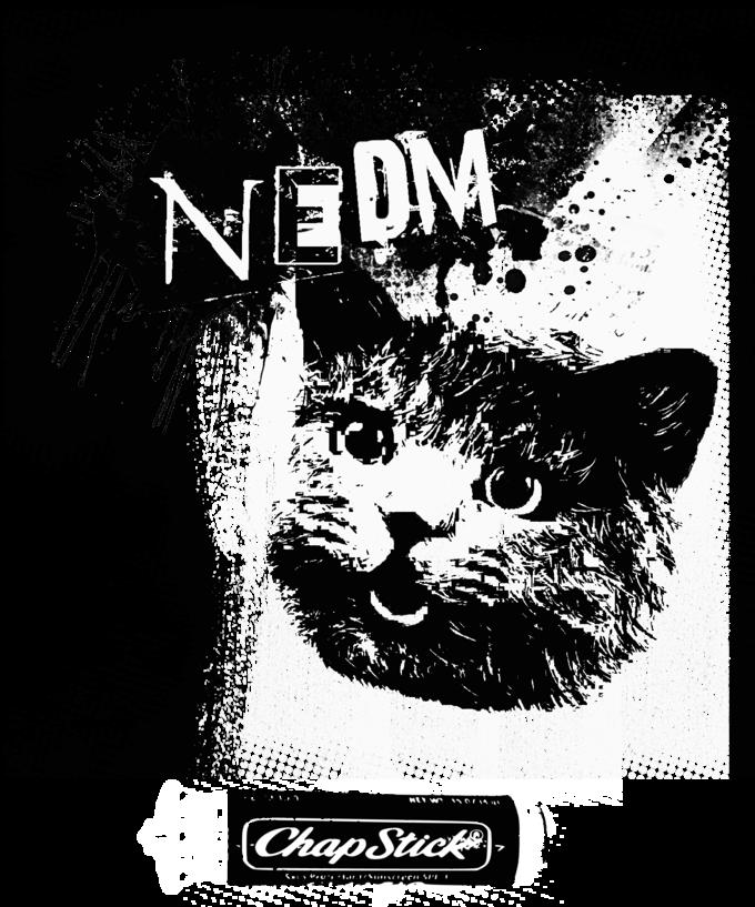 NEDM.png