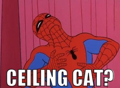 ceilingcat.png