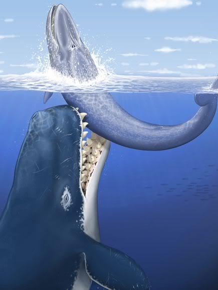 whale01-leviathan-rendering_22737_6.jpg