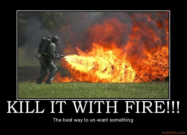 kill-it-with-fire-demotivational-poster-1235695993.jpg