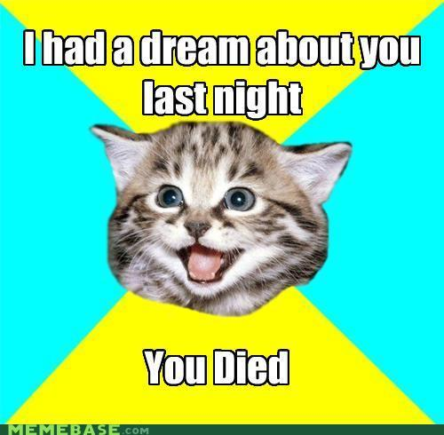 memes-happy-cati-had-a-dream-about-you.jpg