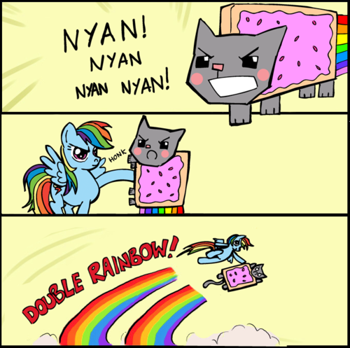 tumblr_lop8pk17sg1r0p5iko1_500 image 152214] nyan cat pop tart cat know your meme