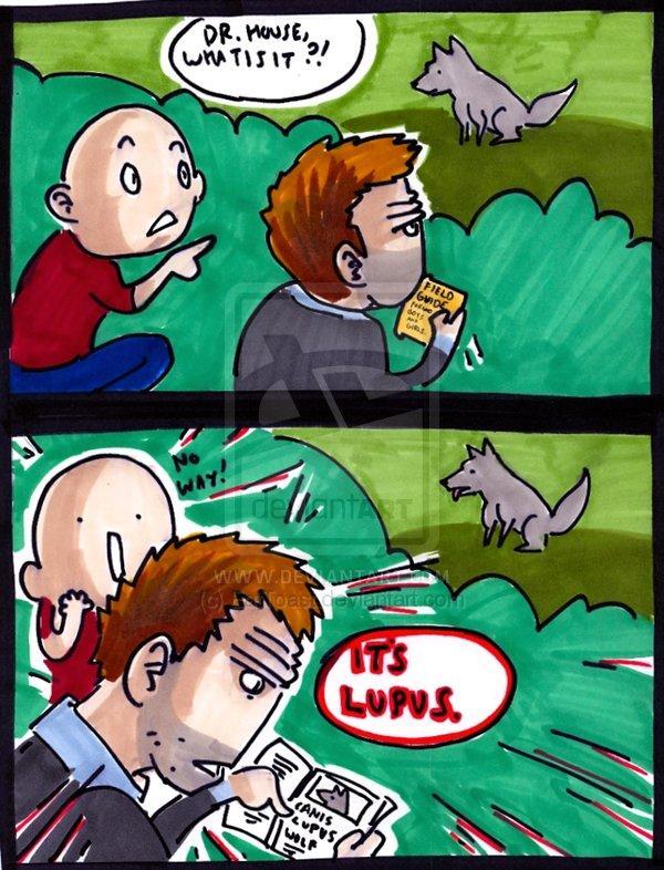 lupus_joke_number_8529_by_EatToast.jpg