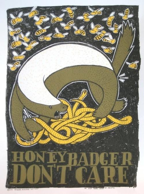 honey-badger-20110303-164336.jpg