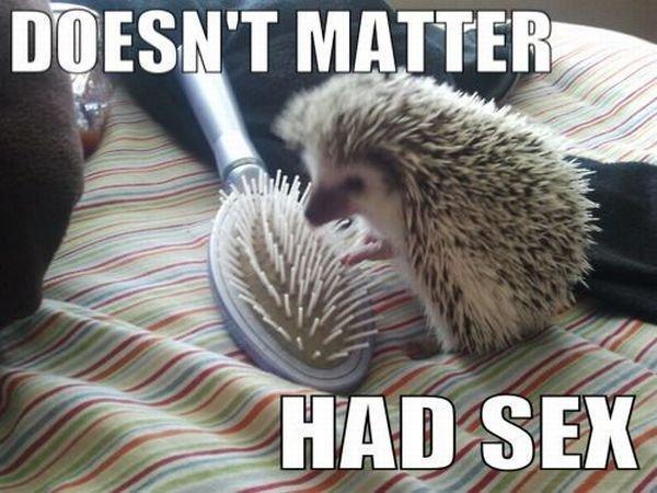 doesnt-matter-had-sex.jpg