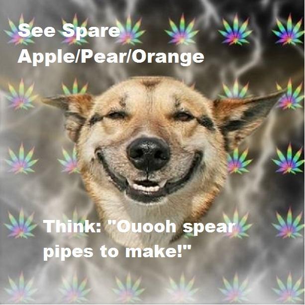 Stoner-Dog.jpg