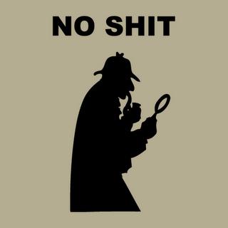 no_shit_sherlock.png