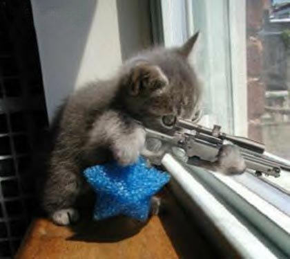 The+Kitty+Sniper_5d3a8f_564.jpg