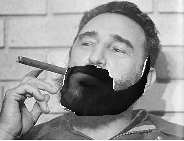 castrowithbeard.png