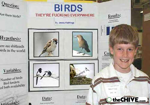 hot_weird_funny_amazing_cool3_main-hilarious-funny-fake-science-fair-projects-191_2009072602581110106.jpg