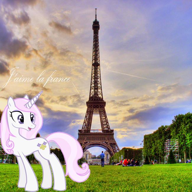 france_pony.jpg