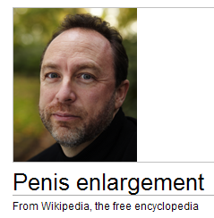 LOLwiki.PNG
