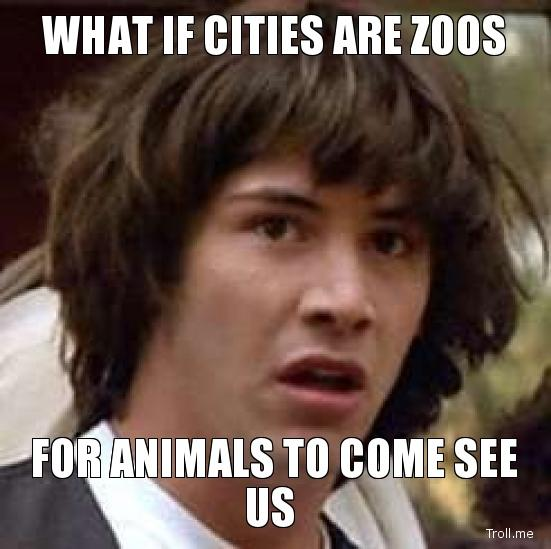 what-if-cities-are-zoos-for-animals-to-come-see-us.jpg