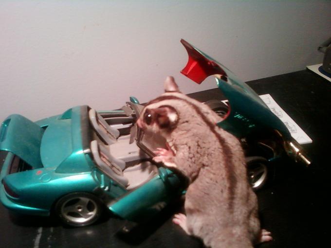 Benson the mechanic.